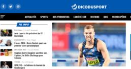 Dicodusport a su faire valoir des sports moins connus.