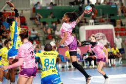 Nantes Atlantique Handball veut décoller vers les sommets