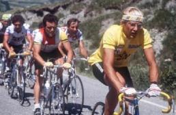La démonstration de Laurent Fignon sur le Tour 1984